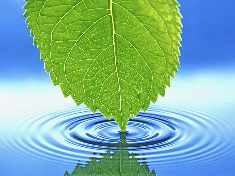 Про водохресну воду. Синодальний відділ у справах молоді упц