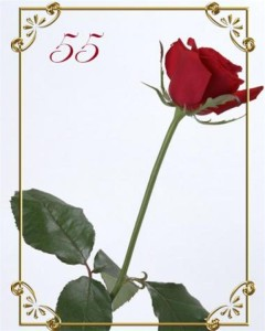 Бенефіс день народження жінці 55 років сценарій. Святковий портал ювілей-на-біс.рф-все для вашого ювілею